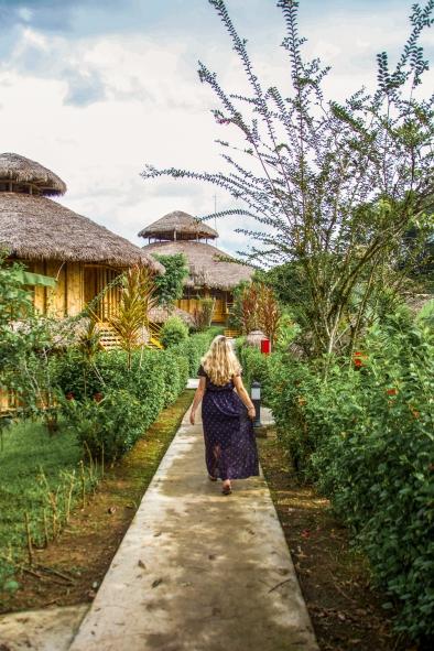 Ecuador travel, Amazon hotels, amazon tours, La Selva, jungle lodge,