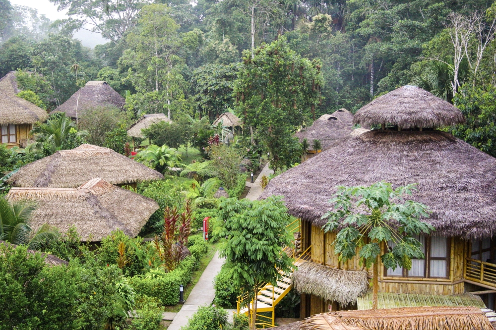 ecuador, amazon travel, la selva lodge, ecotourism, visit the amazon, jungle lodges