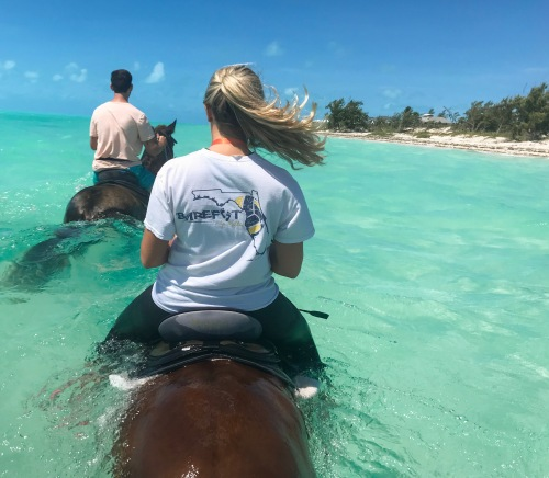 horse back riding in the ocean, what to do in turks and caicos, provo ponies