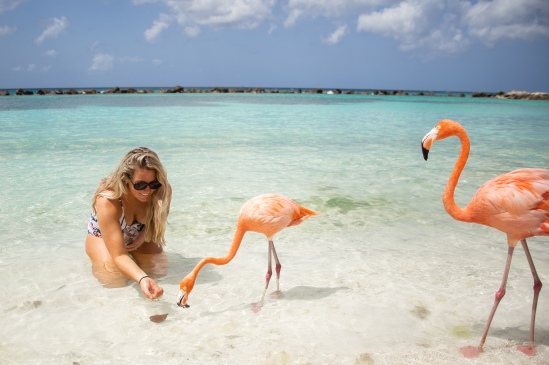 Aruba Travel, Aruba weekend, Renaissance Hotels, Private island, flamingo beach