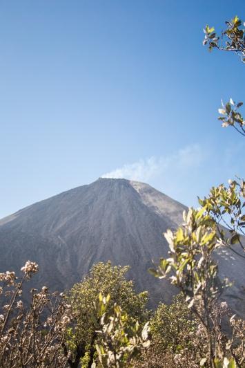 volcano pacaya antigua guatemala